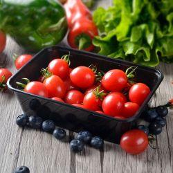 Opslag van het Voedsel van de Microgolf van Eco de Vriendschappelijke Veilige met Container van het Voedsel van het Deksel de Beschikbare Plastic