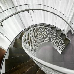 Arc лестницы с пользовательскими Balustrade из кованого железа с изогнутой стеклянной лестницы для дома