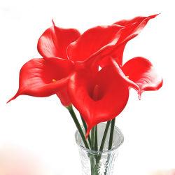 Realer Notecalla-Lilien-Großverkauf PU-künstliche Blume für Hauptdekor