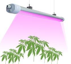 &micro 300; Mol/S hohe Leistung LED wachsen hellrosa Spektrum/voll Spektrum wasserdichtes 50With150With200W mit dem medizinischen Sämling-/Tomatenpflanze-Wachsen