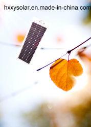 최고 품질의 통합형 태양계 거리 라이트 태양 외부 라이트 100W