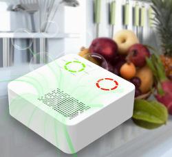 2020 pequeno gerador de ozônio preservação de alimentos frigorífico de esterilizador esterilizador de ar Esterilizador de ozono