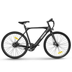 스텔스 로드 에바이크 시티 로드 에바이크 전기 자전거 파워풀한 모터
