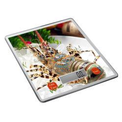 Báscula de cocina Digital al por mayor con la transferencia de calor de la plataforma de impresión (SKE073FULL-H)