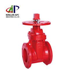 (Z45-300A) valvola con punto di iniezione ad estremità flangiata NRS da 300 psi per protezione antincendio Il sistema utilizza il marchio APC