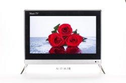 Téléviseur LED 17 19 Inch DVB-T T2 S2 Téléviseur LED 17 Dled Digital TV LED D'USINE REMISE