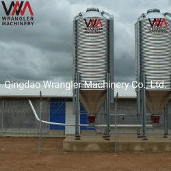 Maison de la volaille des silos d'alimentation galvanisé avec une bonne qualité
