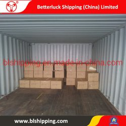 LCL de transporte desde/China Guangzhou/Shenzhen al Hochiminh/Vietnam/Sudeste de Asia Mar Freight Forwarder