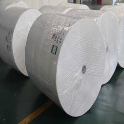 Formato del rullo enorme e tessuto di stanza da bagno materiale della pasta di cellulosa del Virgin