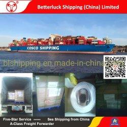 Logistischer/des Verschiffens Dienstleistungen der Ladung-See-/Seefracht/, zum des Au-Prinzen, Haiti an den Port anzuschließen von China Guangzhou/Shenzhen/Dongguan/Foshan/Zhongshan/Jiangmen/Zhuhai/Huizhou