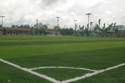 Синтетические травы, искусственных травяных футбольное поле (НТГС-45S-516-CS)