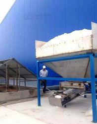 글로벌 빛나는 중국 테이블 음식에 의하여 요오드로 처리되는 소금 프로세스 기계