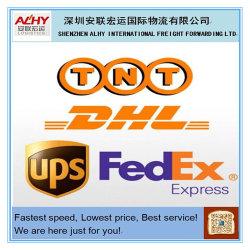 La Cina con esperienza Shenzhen Market Buying e Purchasing Trade Agency