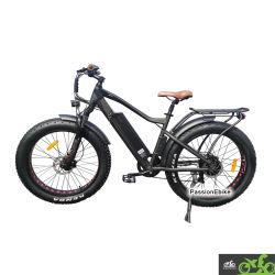 Pour les adultes Emtb Ecotric Retail 1000W électrique de la saleté hors route vélo de montagne de graisse