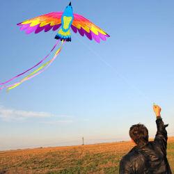 高品質の飛行の糸が付いている動物の鳥のフェニックス凧