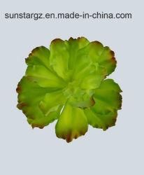 O PVC Echeveria planta artificial Spray para decoração (50212)