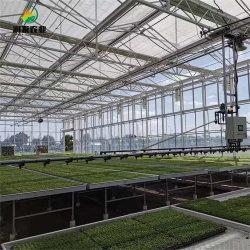 Policarbonato completa de efecto invernadero agrícola proyecto llave en mano con la construcción rápida