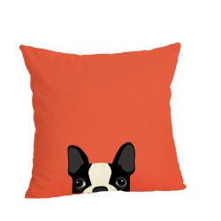 Coperchio di tela dell'ammortizzatore del sofà del salone della federa di animale domestico di serie variopinta sveglia del cane
