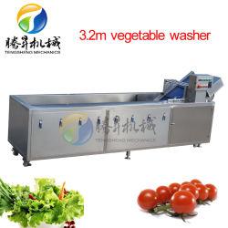 음식 기계 초음파 거품 세탁기 참외 청과 (TS-X300)를 위한 식용 버섯 모양 오존 청소 기계