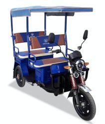 Китай 48V800W прогулка на рикше, три колеса инвалидных колясках пассажира такси