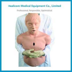 H-CPR155低価格の医学の人間のモデル病院の人体モデル