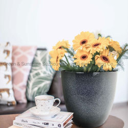 Piantatrice di plastica del giardino del POT della pianta di POT del fiore dell'uovo domestico della decorazione con effetto di ceramica per sia dell'interno che esterno