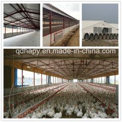 Prefabbricato Poultry Farm House E Automatic Poultry Equipment