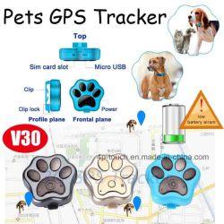 Inseguitore astuto di GPS dell'animale domestico astuto approvato di RoHS del Ce con il LED V30 chiaro