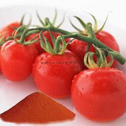 Природные томатный извлечения Lycopene Wtih 5%