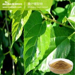 Amostra grátis Planta Natural 1-Deoxynojirimycin Mulberry extrato de folhas