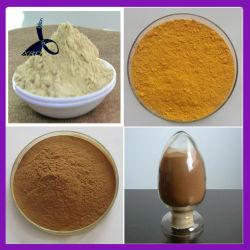 Ambroxol HCl de haute qualité avec des prix d'usine CAS 23828-92-4
