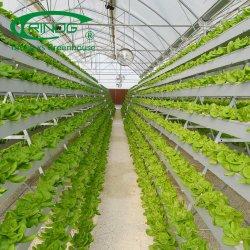 Коммерческие культивирования гидропоники системы кадастров парниковых газов за фильмы для роста растений