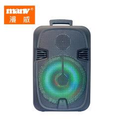 Der kompakteste bewegliche Bluetooth Audios-Lautsprecher