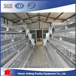 2-5tier 가금 농장 건전지 층 닭 감금소 (가금 장비)