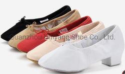 2020 Bonito Paño de lienzo de alta calidad personalizado Vals de salón de baile Zapatos de Baile latino