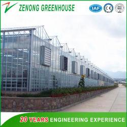 سعر جيد زجاج متعدد النطاقات/زجاج عائم للاحتباس الحراري مع نظام الهيدرولوجيا