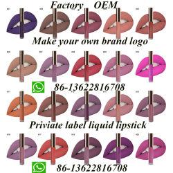 Eigenmarken-Kosmetik-Lippenglanz-Verfassungs-Paket-Gefäß-flüssiger Mattlippenstift
