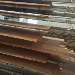 Bintangor Furnier-Blatt mit Pappel-Furnierholz für Möbel