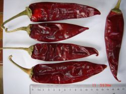 American Piment rouge