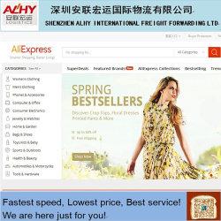 Agenzia di sourcing di Shenzhen Alhy Import&Export