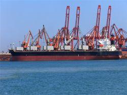 Delmas службы доставки грузов из Гуанчжоу/Шэньчжэнь в Момбасу