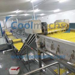 Erdbeere-Tiefkühlverfahren-Produktionszweig/gefrorene Obstverarbeitung-Zeile