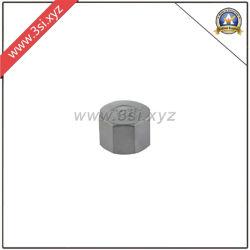 أغطية سداسية للأنابيب من الفولاذ المقاوم للصدأ (YZF-F282)