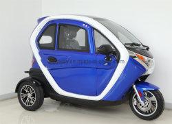 Risciò elettrico Closed della rotella del motore 3 di alta qualità 2200W con il certificato del EEC