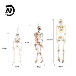 La decoración de Halloween personalizado modelo médico modelo Esqueleto Humano