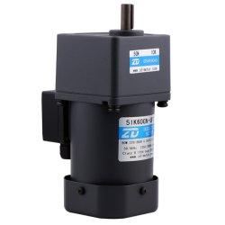 Micro motore di riduzione dell'attrezzo di CA di induzione elettrica di ZD 110V/220V 60W