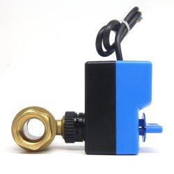 صمام كهربائي نحاسي باتجاهين، كرة القدم، AC220 فولط Dn25 1 بوصة