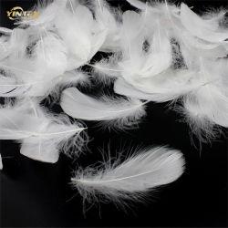Plumas de pato blanqueada de 4-6/6-8 cm cojín para el mercado de Europa y EE.UU.