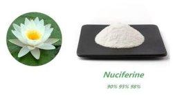 Nuciferine1%- 98 %, extrait de feuille de lotus Poudre Poudre de perte de poids
