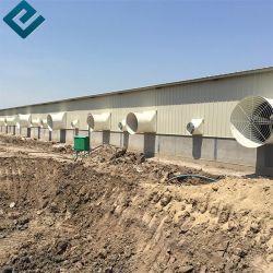 動物の夫鶏装置の酪農場の構造は鋼鉄家禽の家を設計する